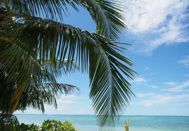 Joulu yksin Malediiveilla – mitä luulet, kannattiko?
