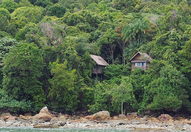 Permai Rainforest Resort – puumajoja, delfiineitä ja itseni ylittämistä