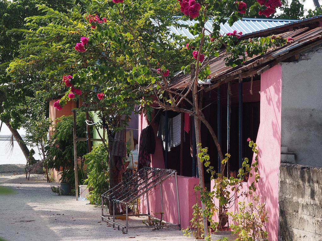 Aitoa elämää Malediiveilla resortien ulkopuolella