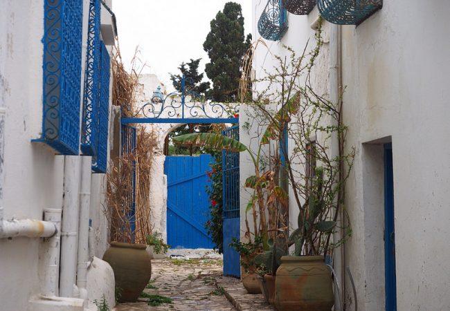 Viiniä tiskin takaa ja muita seikkailuja Sidi Bou Saidissa