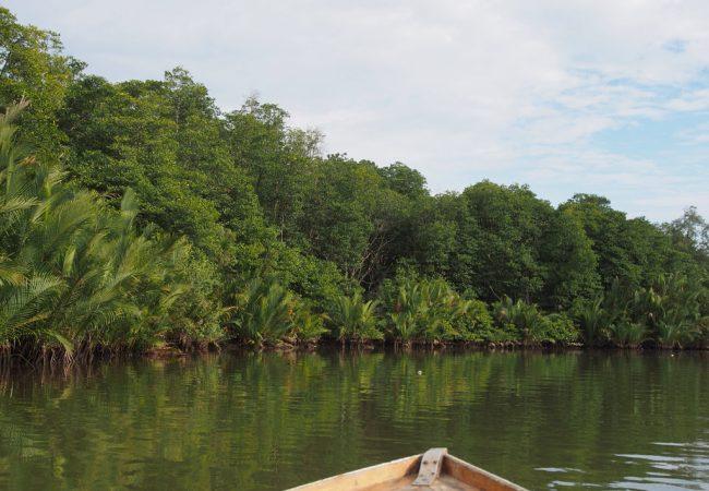 Luontoon Bandar Seri Begawanissa