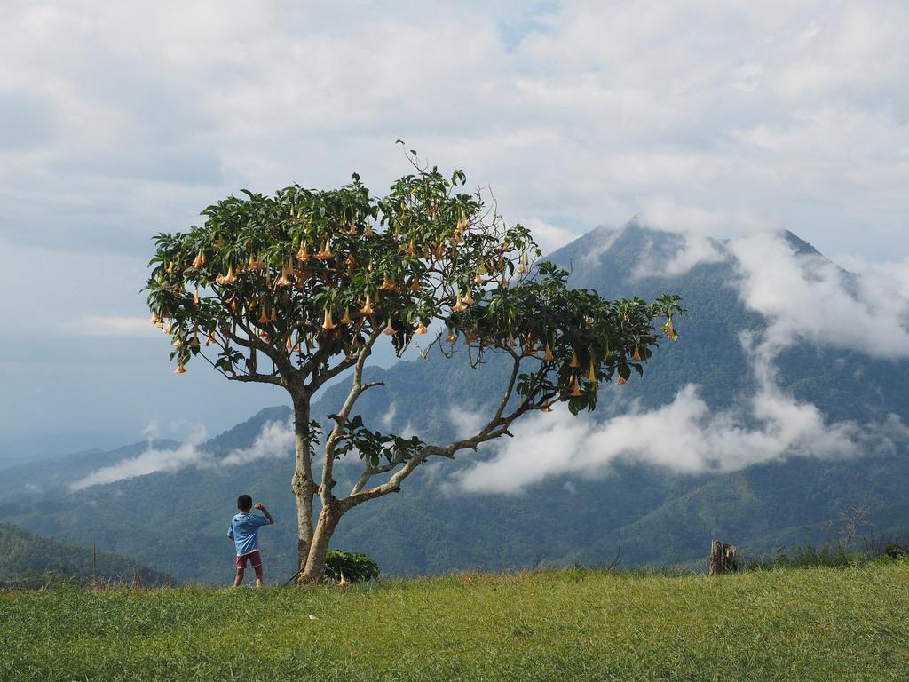 Borneolaista kulttuuria ja must see -paikkoja Sabahissa
