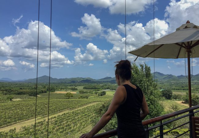 Monsoon Valley Vineyard – päivä viinitilalla Thaimaassa