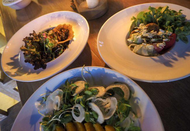 Blue Lotus – kun sekasyöjä vegaaniruokakurssille päätyi